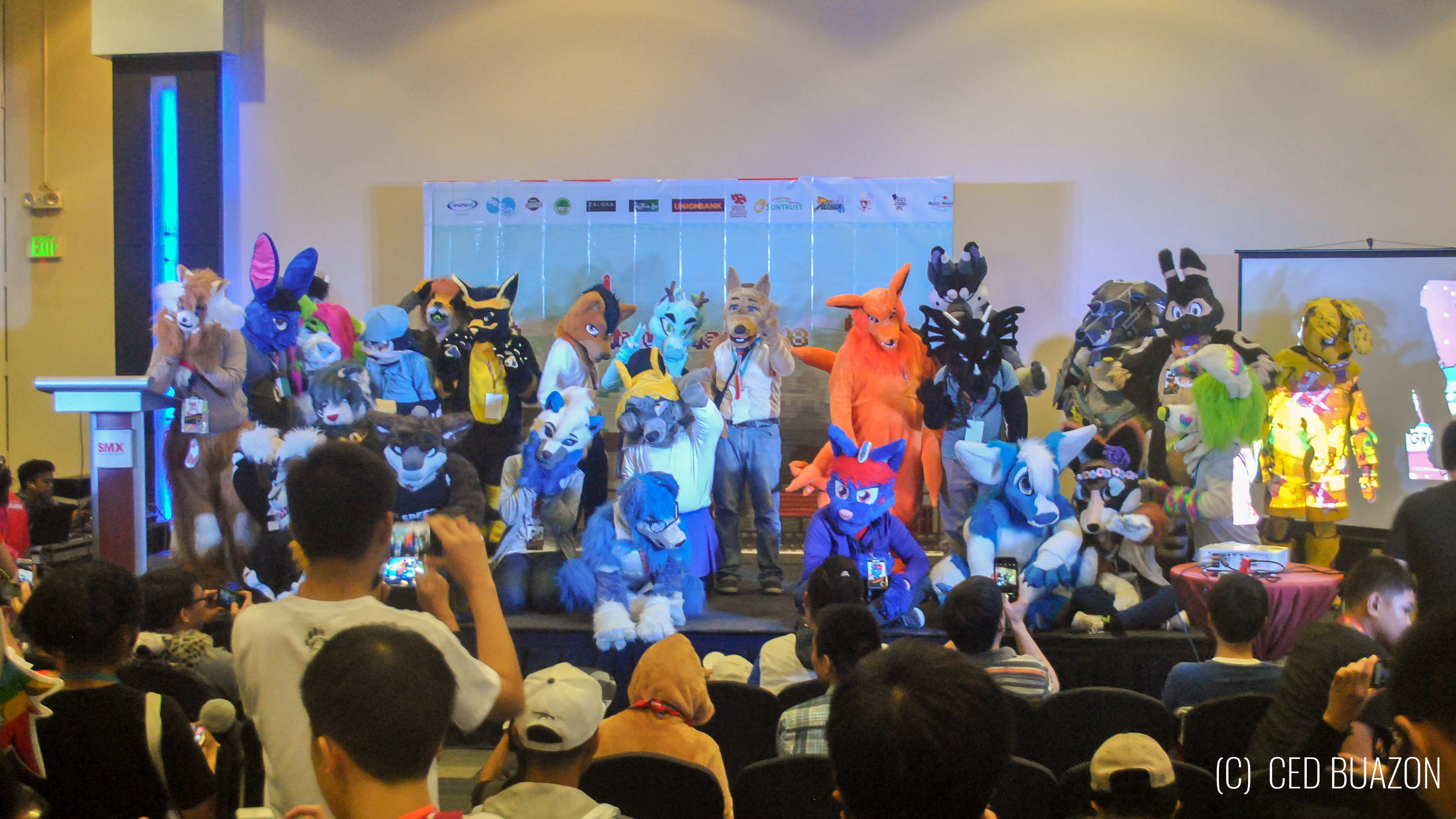 What is a Furry?: A Primer for FurryPinas 2019